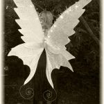 faerie wings by icarus