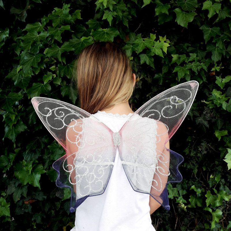 childrens tiny fairy wings