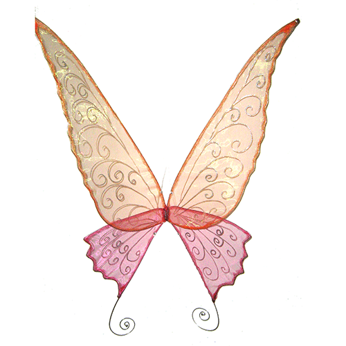 large adult wings