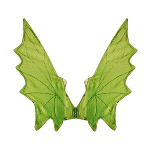 boys dragon wings