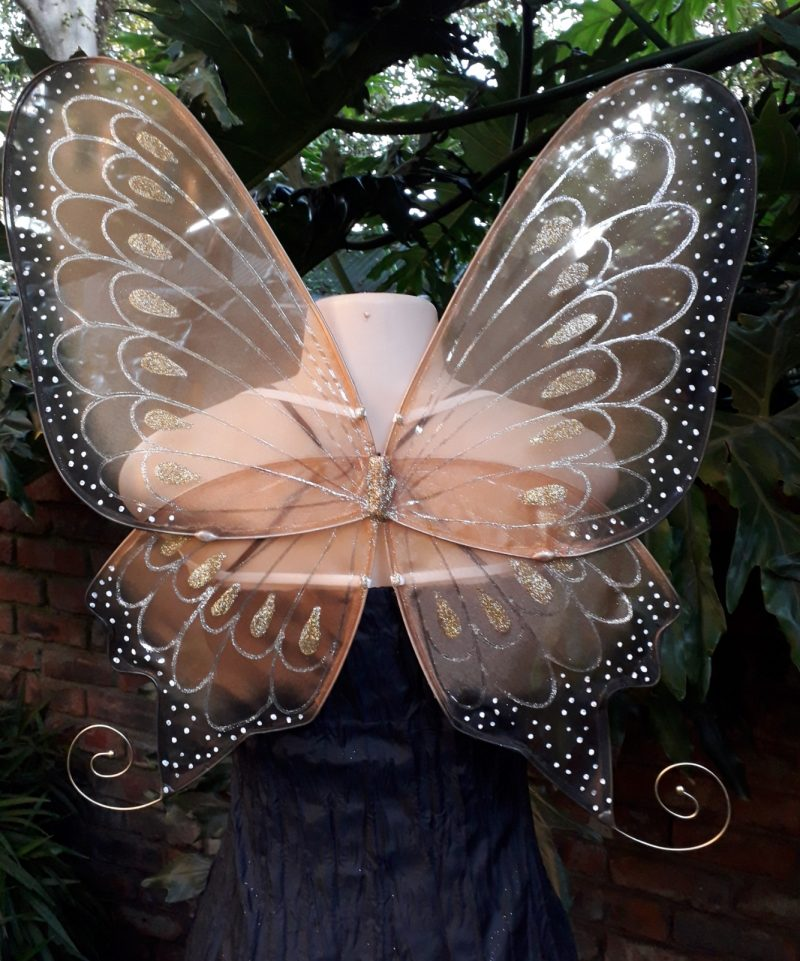 gold fairy wings