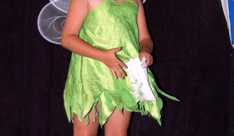 tinkerbell wings