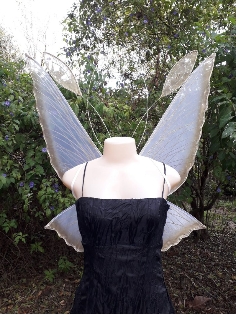 Large Chrysalis Fairy wings for adults
