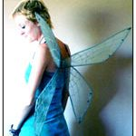 large dragonfly wings