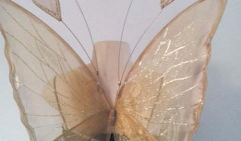gold chrysalis faerie wings