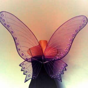 adult butterfly faerie wings
