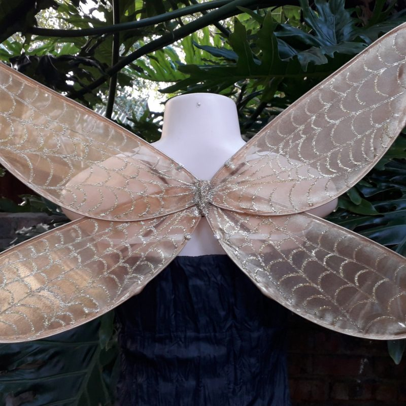 gold dragonfly wings for children