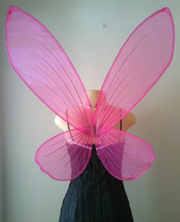 Faerie wings for adults