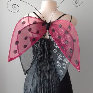 ladybug wings by icarus
