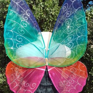 adult rainbow fairy wings