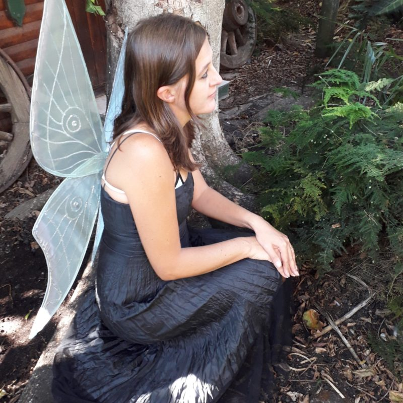 luna moth fairy wings