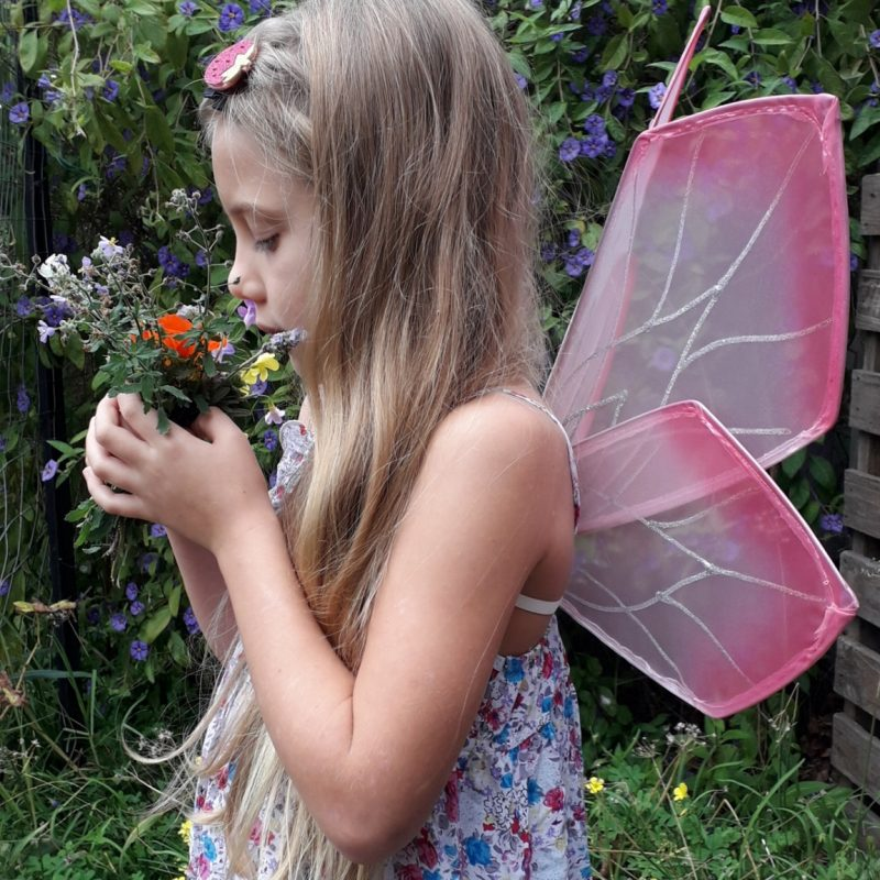 fairy wings for children