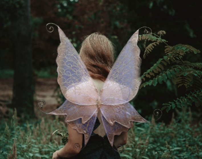enchanted realistic fairy wings by icarus