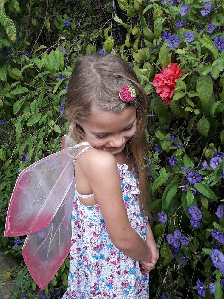 protea flower fairy wings