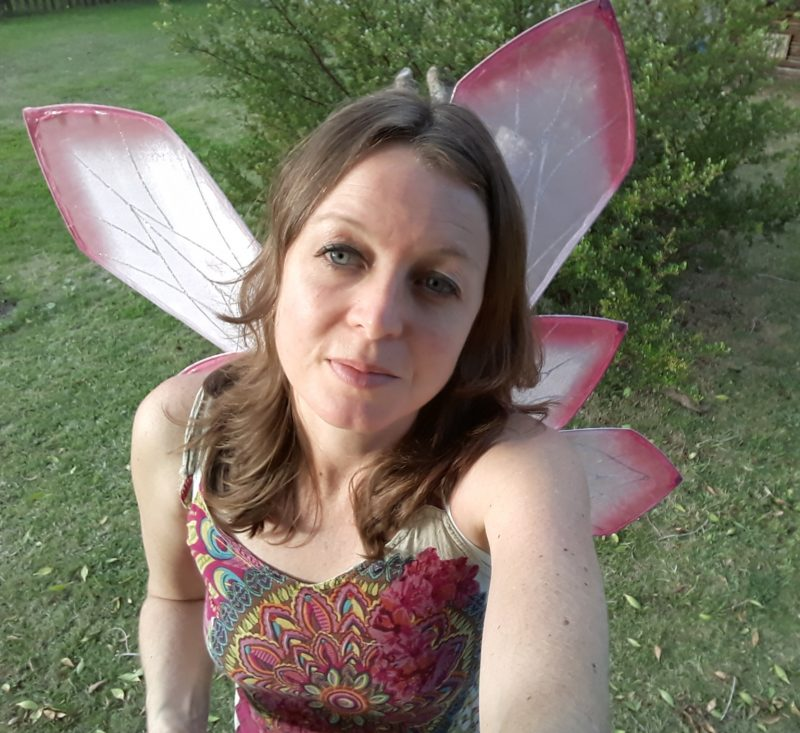 Protea Petal fairy wings for Adults