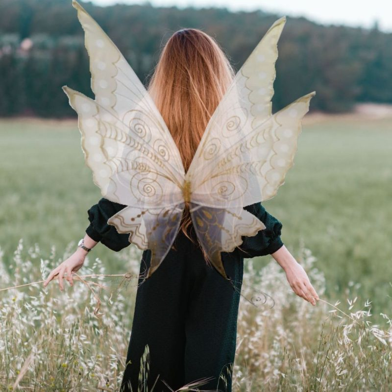 Morning star fairy wings for adults