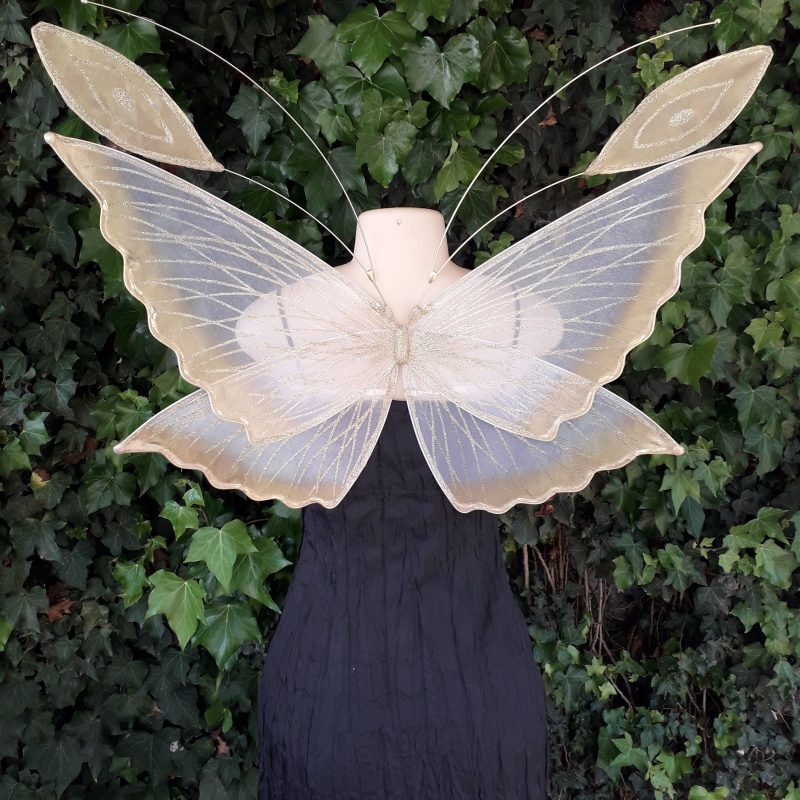 chrysalis fairy wings for children